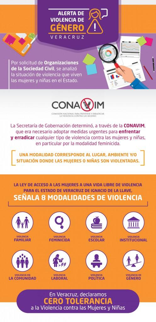 Infografía Modalidades de Violencia